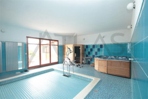 Pool, Jacuzzi, fitness equipment - For Rent: Large Representative 8-bedroom 700 sq.m Villa Prague 6 - Nebusice