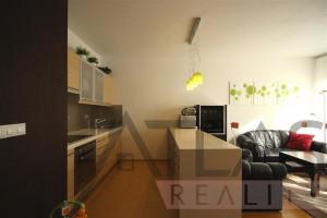 Pronájem bytu 2+1 Praha 6 - Dejvice, Jaselská